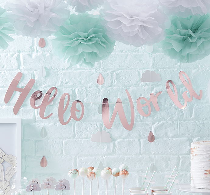 hello world baby shower decorations
