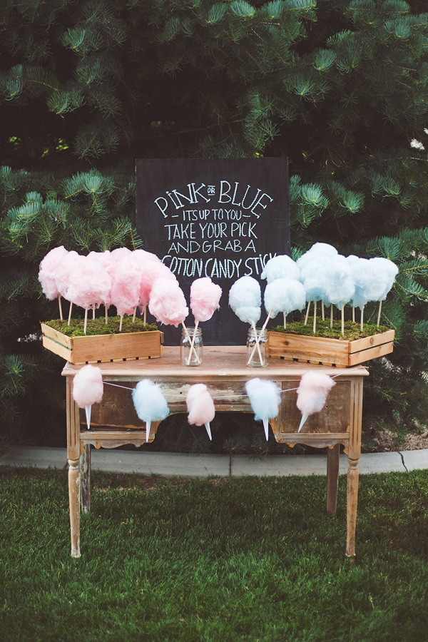 pink or blue gender reveal party