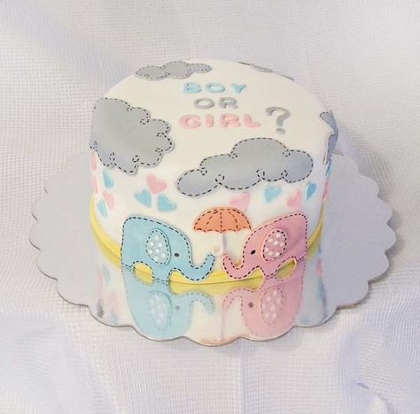 Gender Reveal Cake Ideas 8