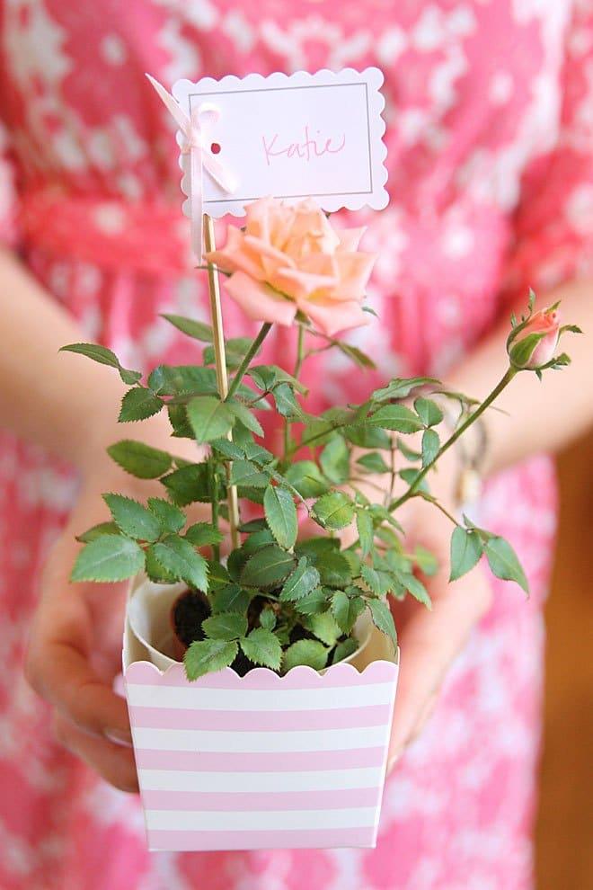 flower favors