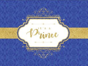 Prince Navy Blue