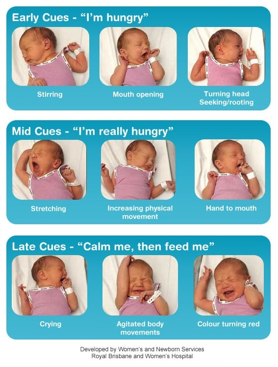 signs baby is hungry feeding cues