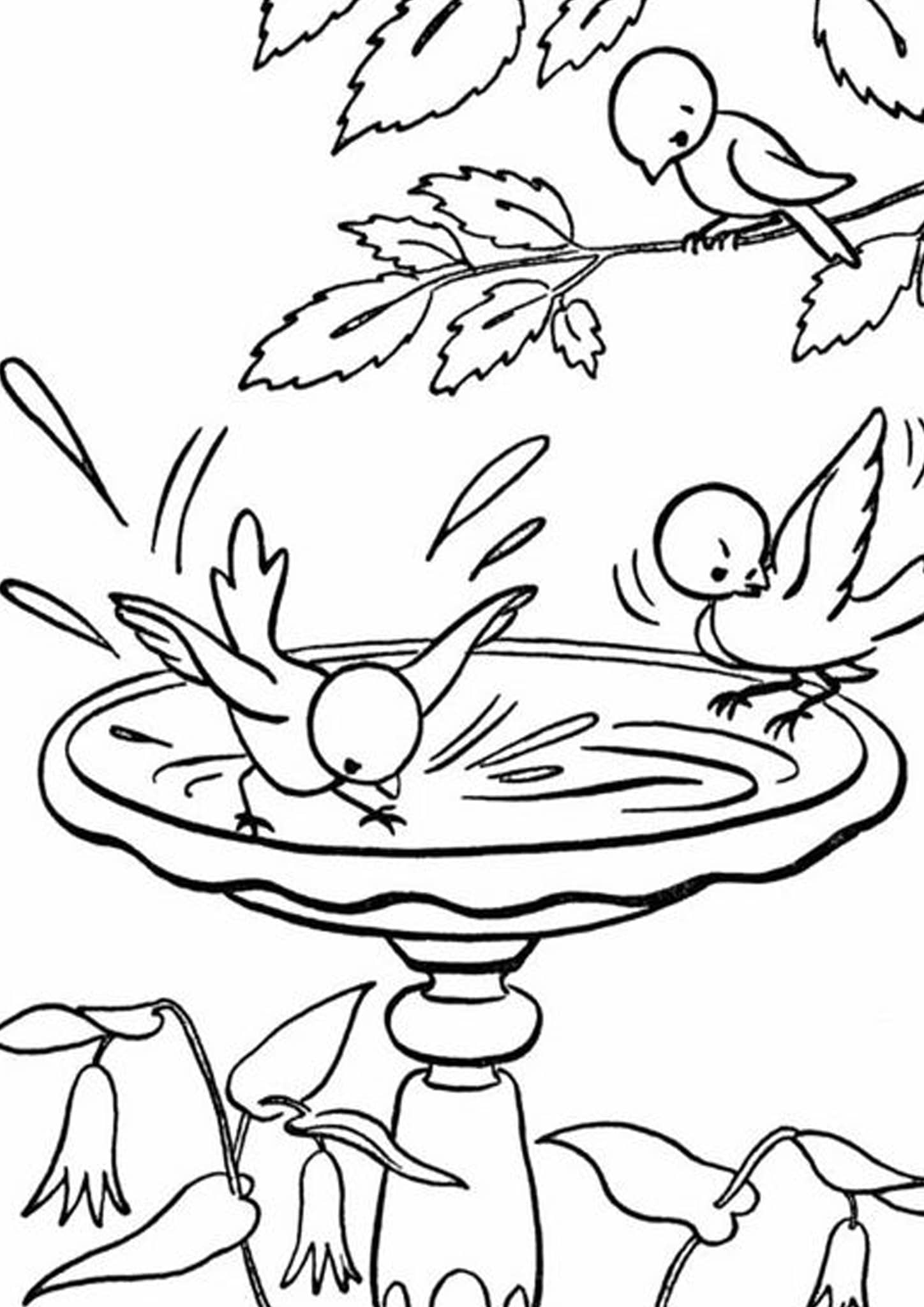 Free & Easy To Print Bird Coloring Pages - Tulamama