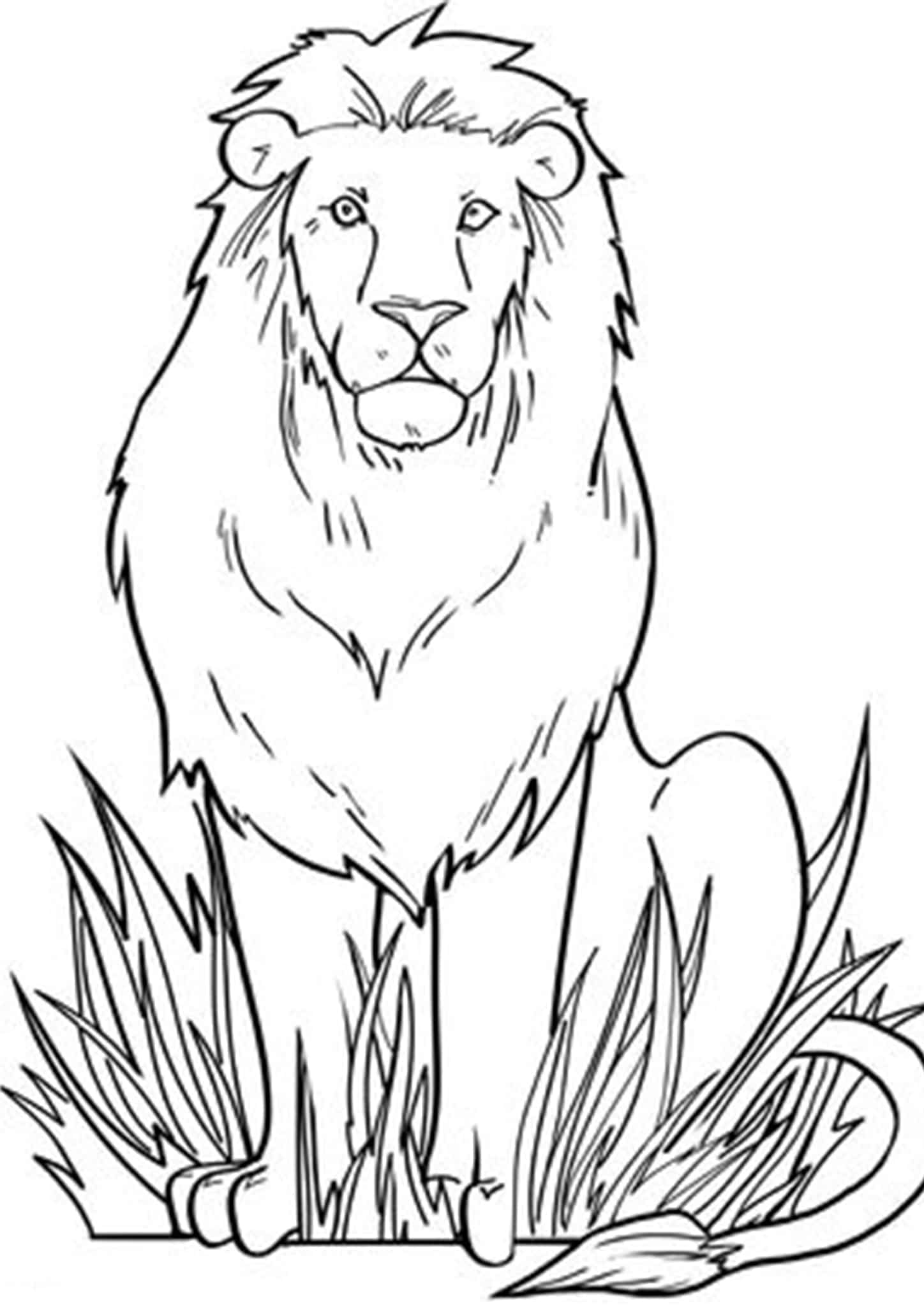 Free & Easy To Print Lion Coloring Pages - Tulamama